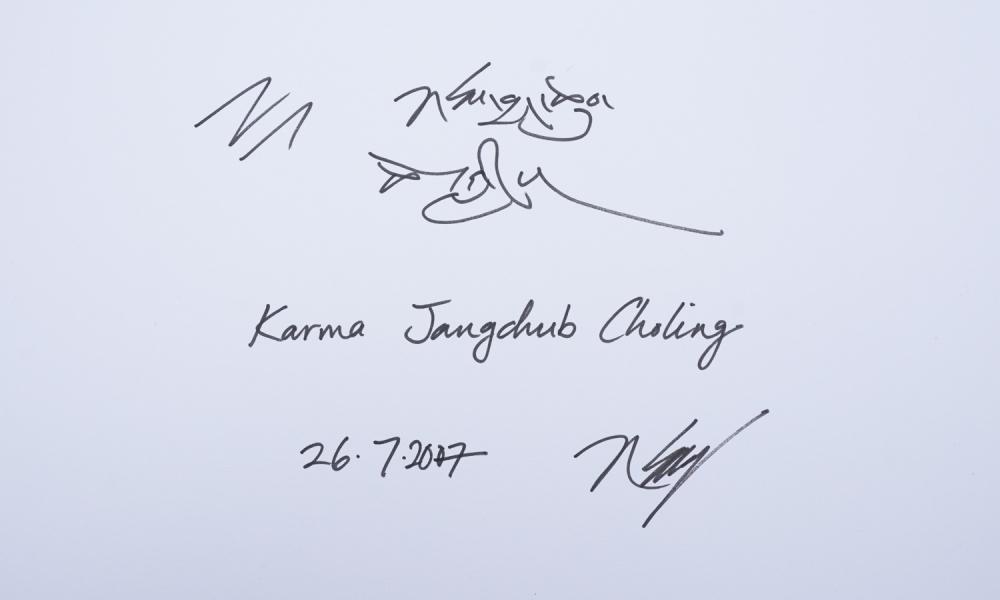 Karmapa17-11